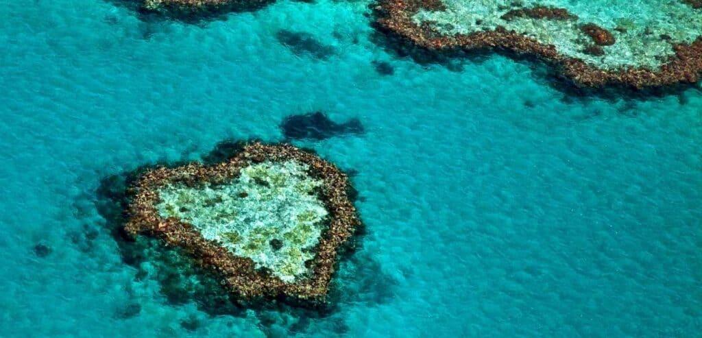 大堡礁的美麗正在消失