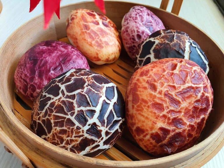 戀戀小包子 蘑菇造型好好玩 願今年萬紫千紅